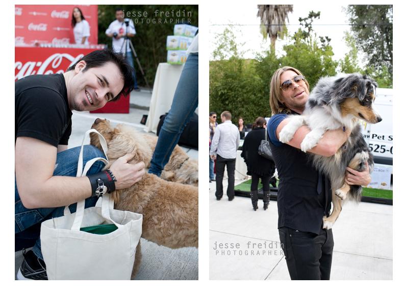 Best Pet Photographer LA