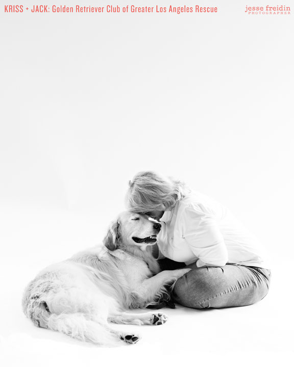 Finding Shelter: Animal Rescue Group Portraits