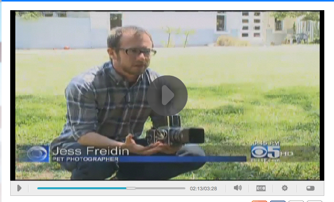 Jesse Freidin on CBS 5- Black Dog Syndrome