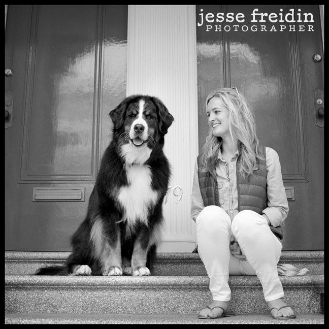 Bernese Mountain Dog- Jesse Freidin