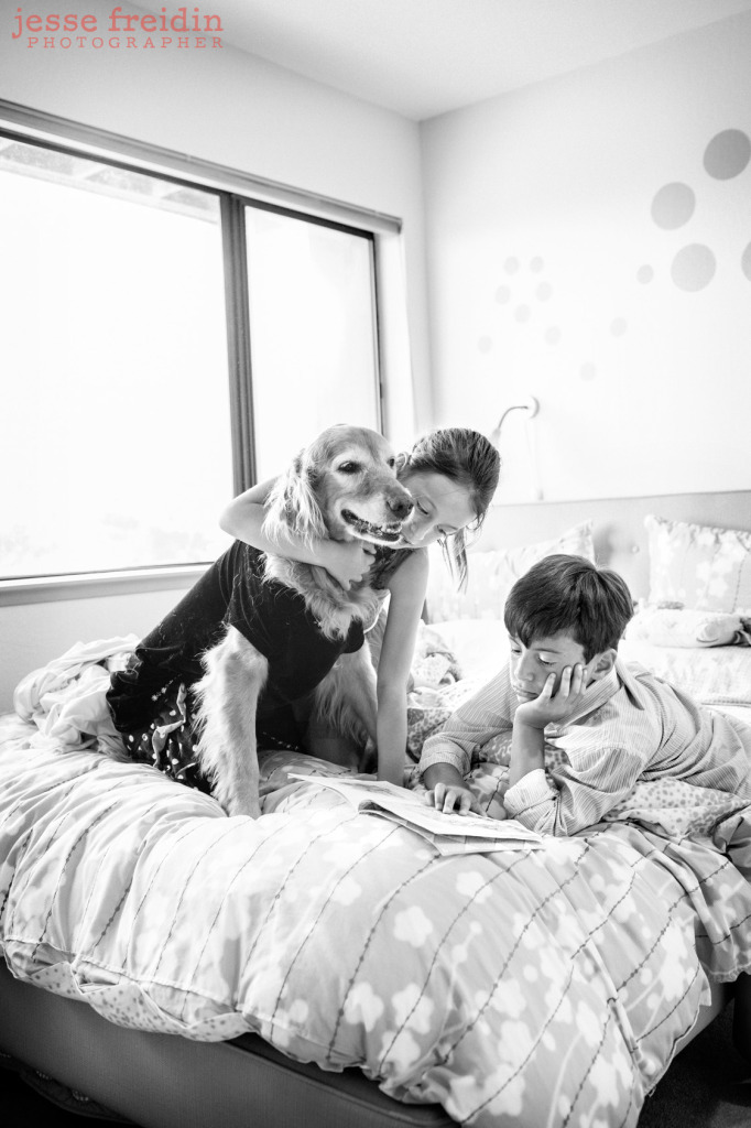 Photography of dogs and kids