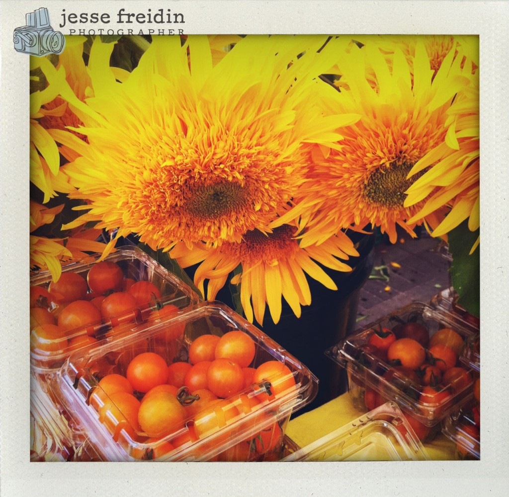 Summer Yellows