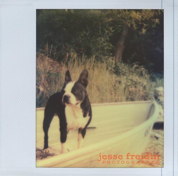 Impossible Project class: Calumet San Francisco Jesse Freidin