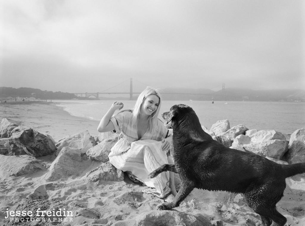 Best Dog Photographer San Francisco