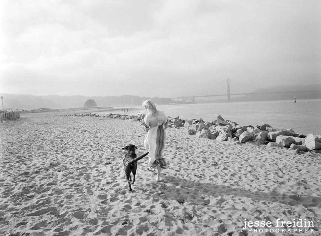 Los Angeles Pet Photography