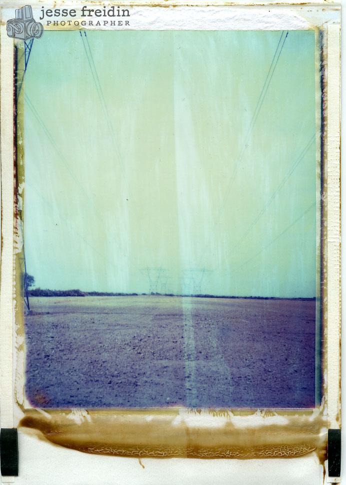Polaroid Field
