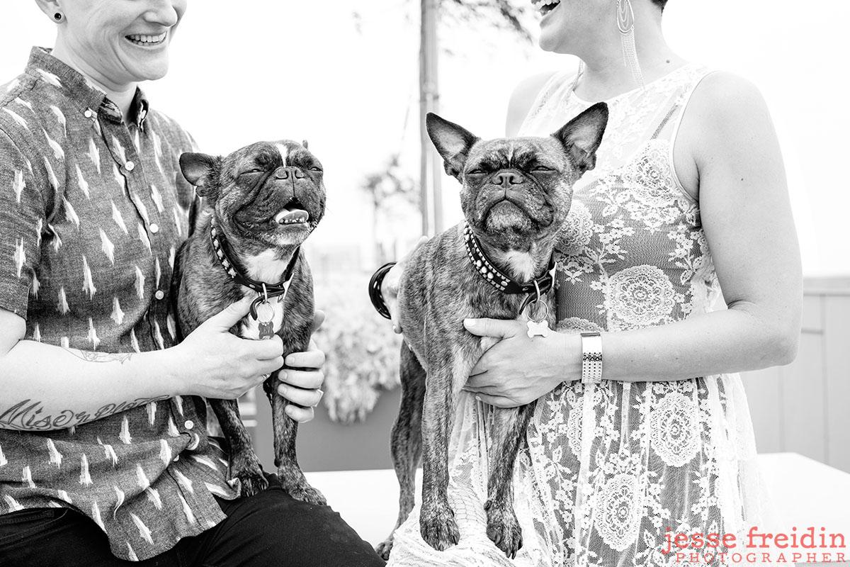 best-pet-photographer-san-francisco