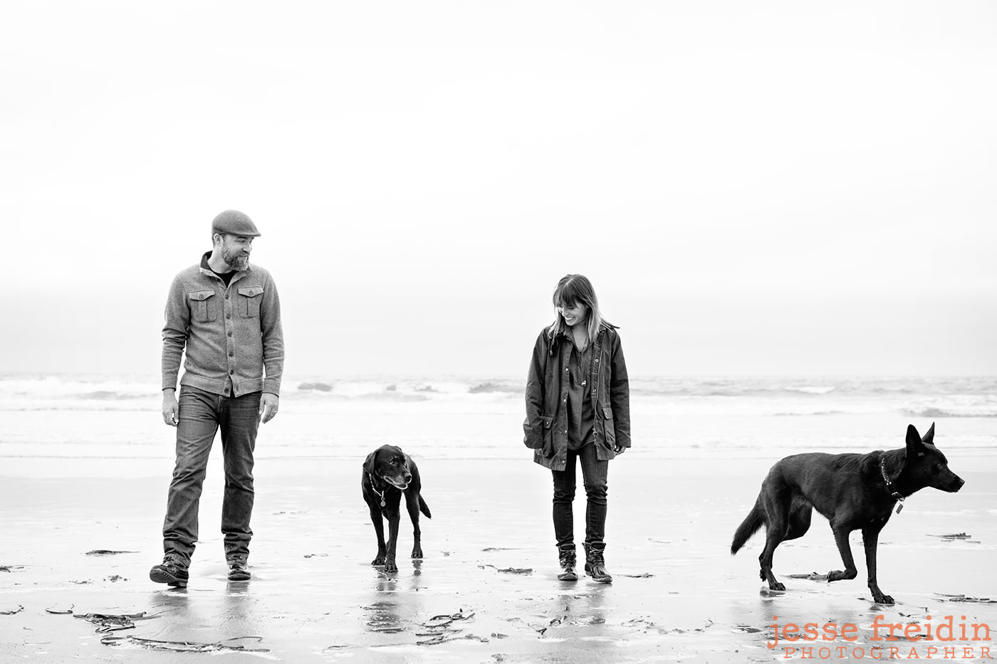 dog-photography-san-francisco