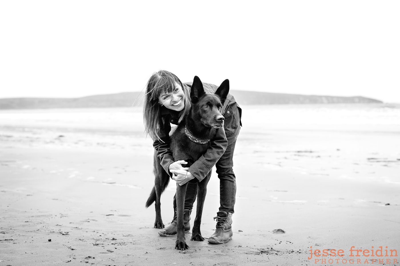 dog-photographer-san-francisco
