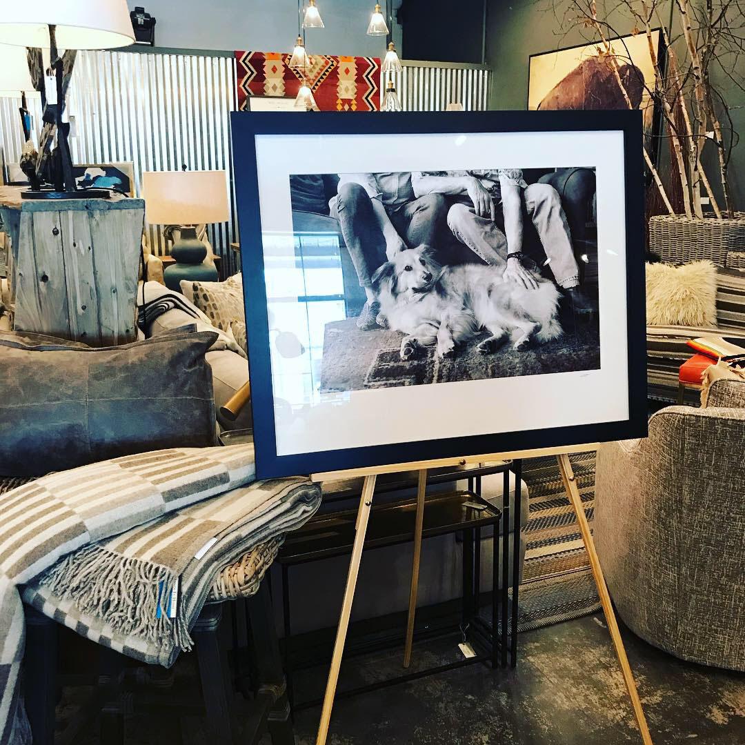 Fine Art Dog Photography at Santa Fe Home