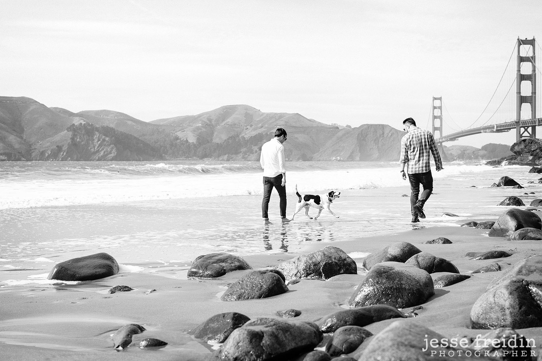 San Francisco Dog Photographer