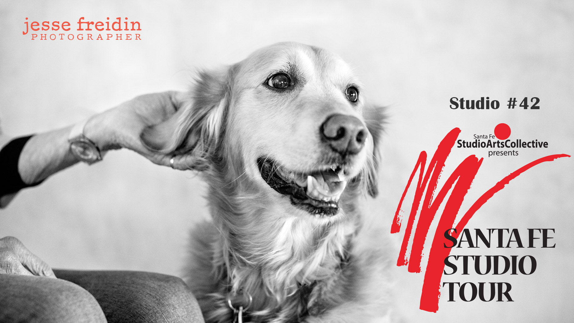 Santa-Fe-Studio-Tour-Dog-Photographer