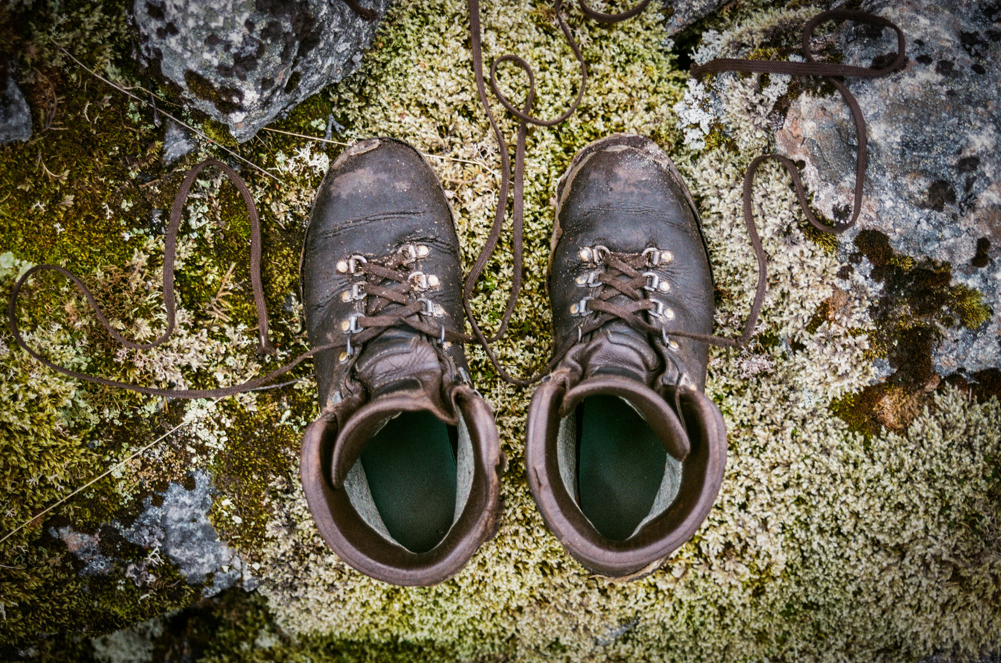 The Last Hike (for my shoes)