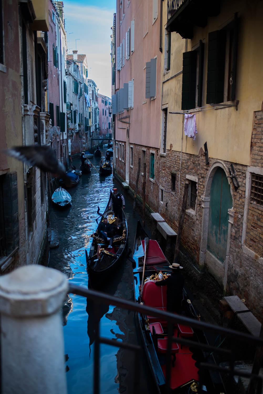 portretten_Venice2019_patriciavanrespaille (4 van 68).jpg