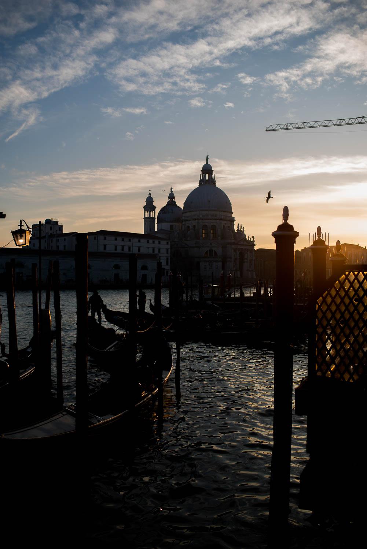 portretten_Venice2019_patriciavanrespaille (43 van 68).jpg