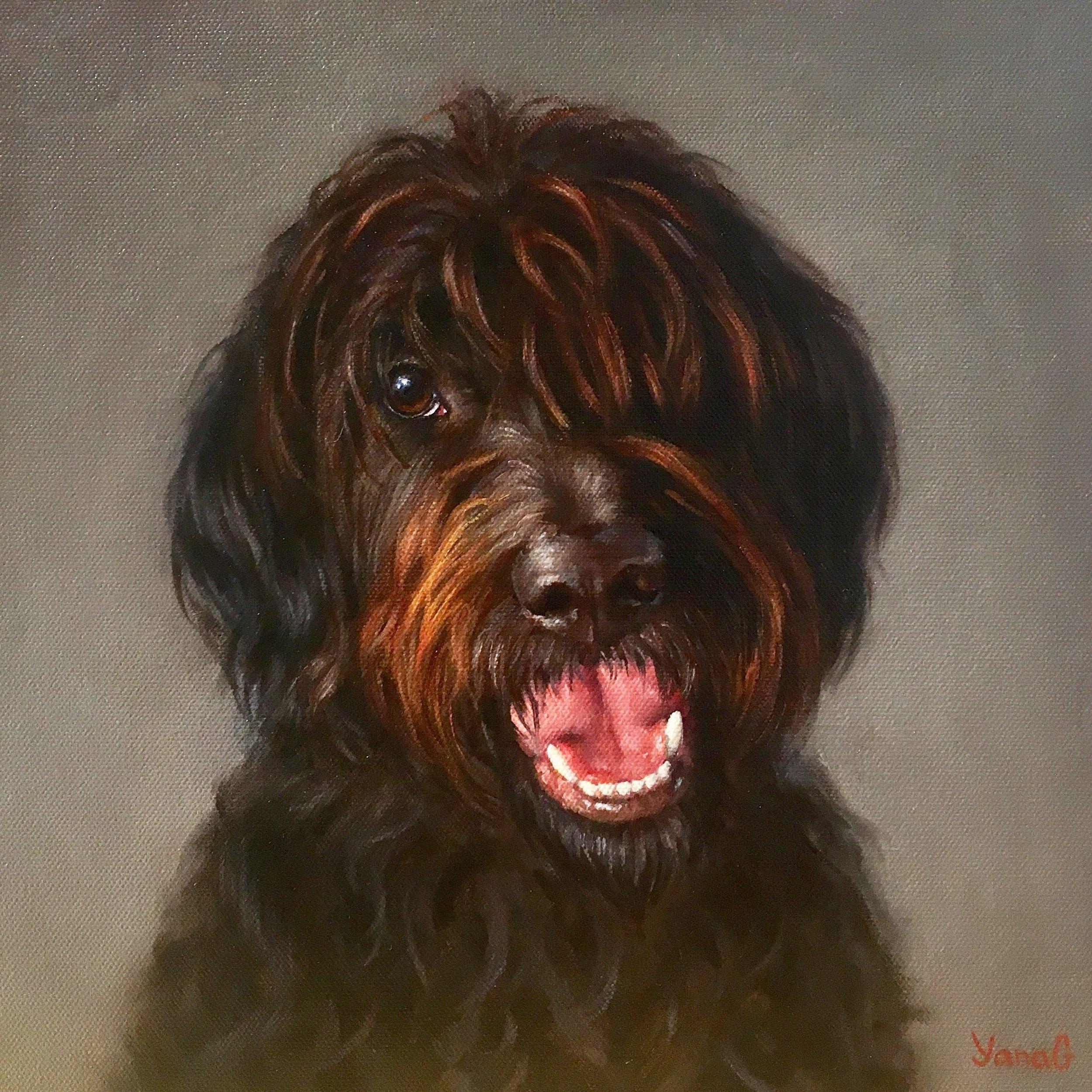 Charli 12x12 Oil on canvas