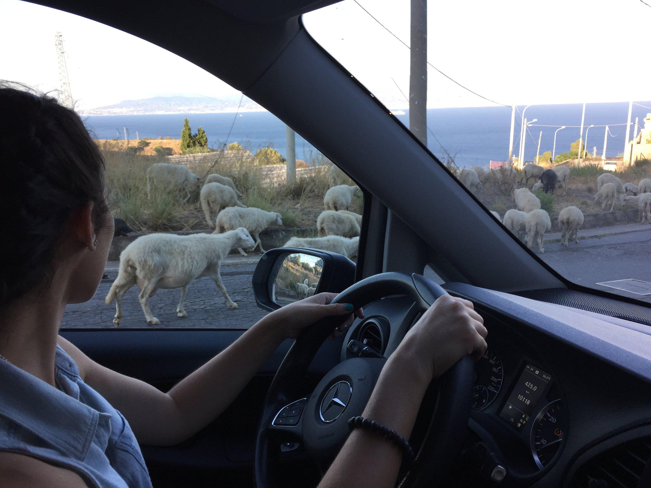 Driving in San Placido Calonerò