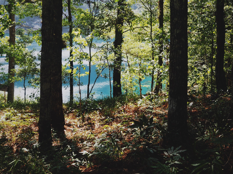Where we made camp