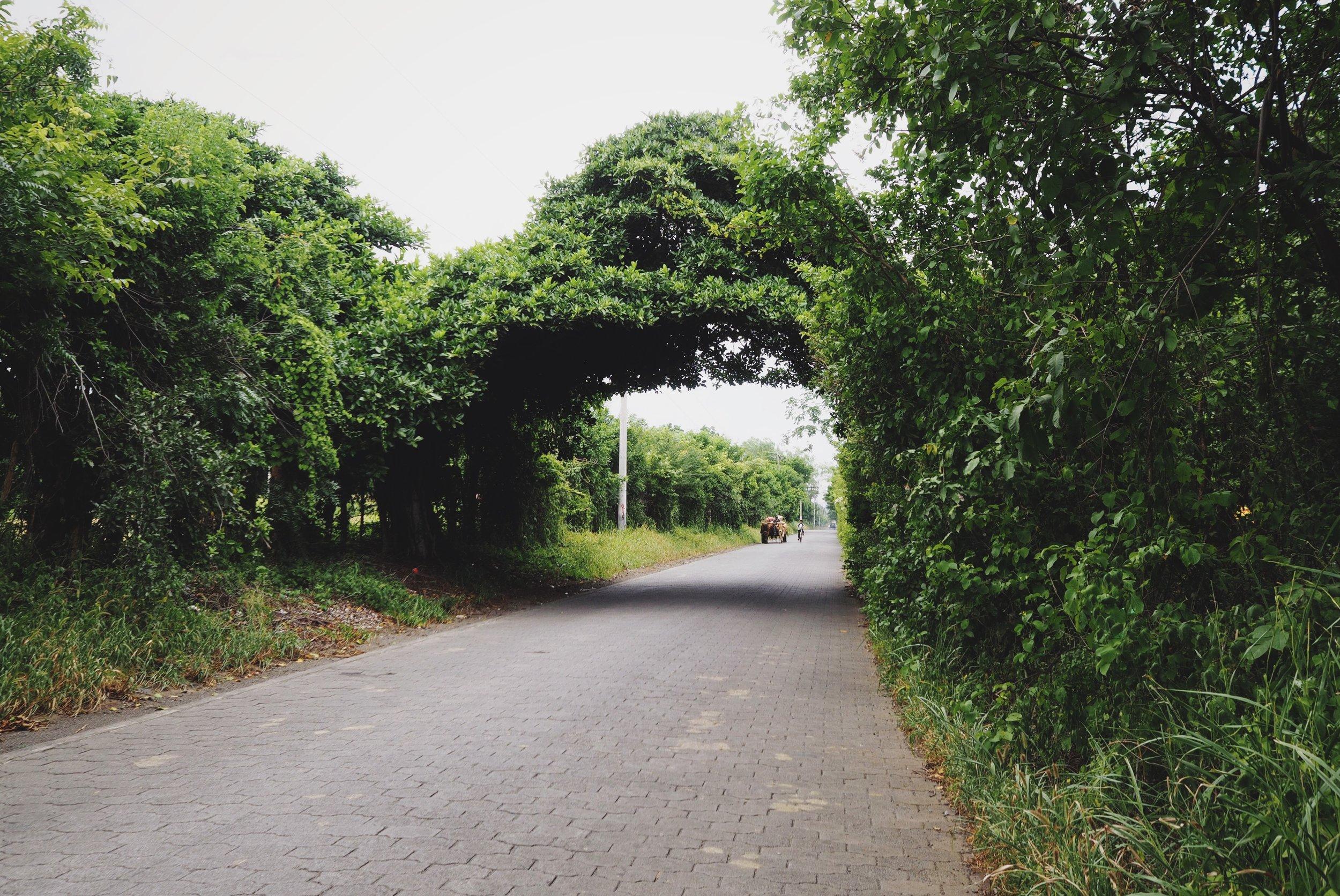 The lush, green roads to Masaya
