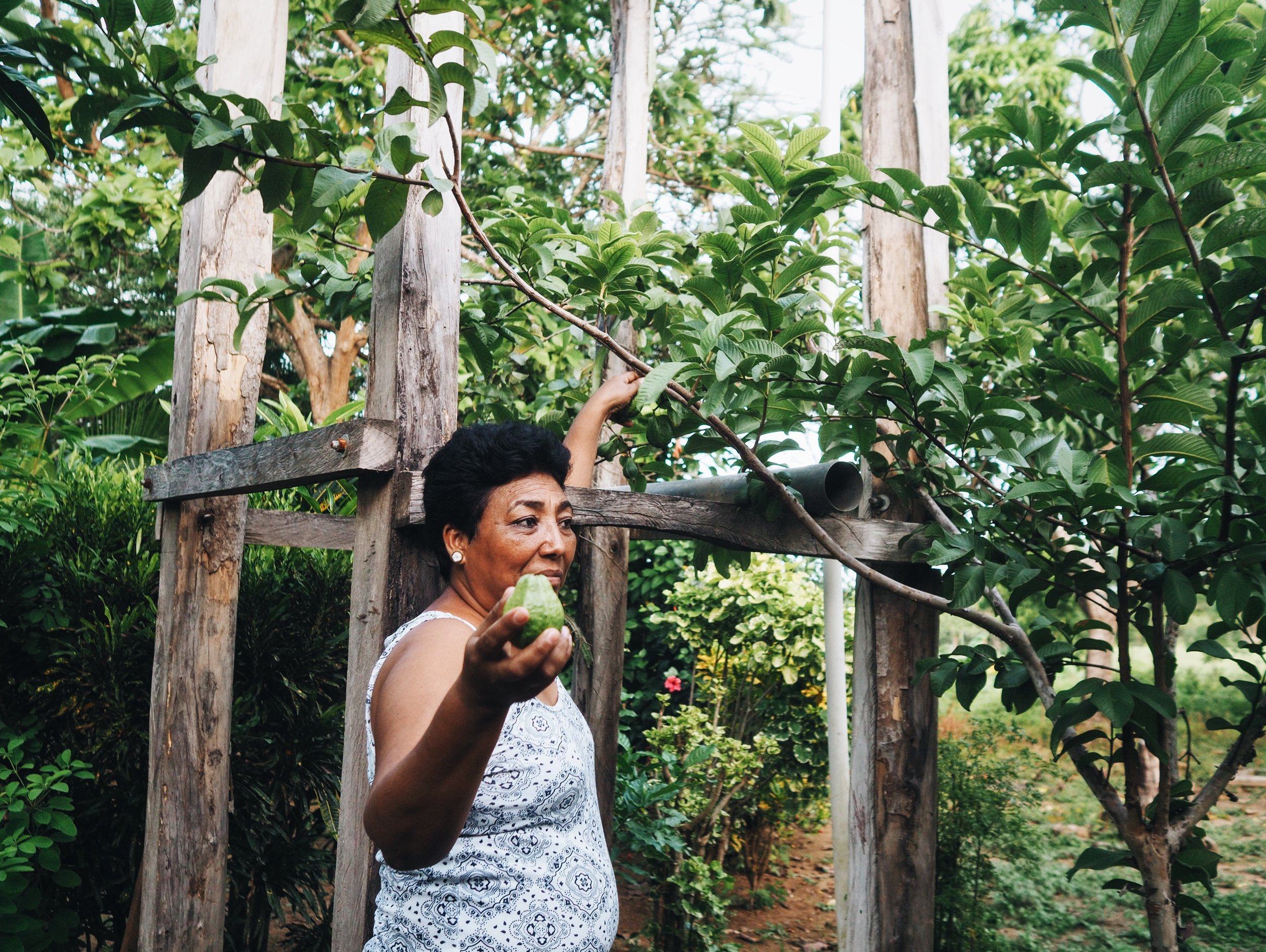 Diana offers us some guayaba