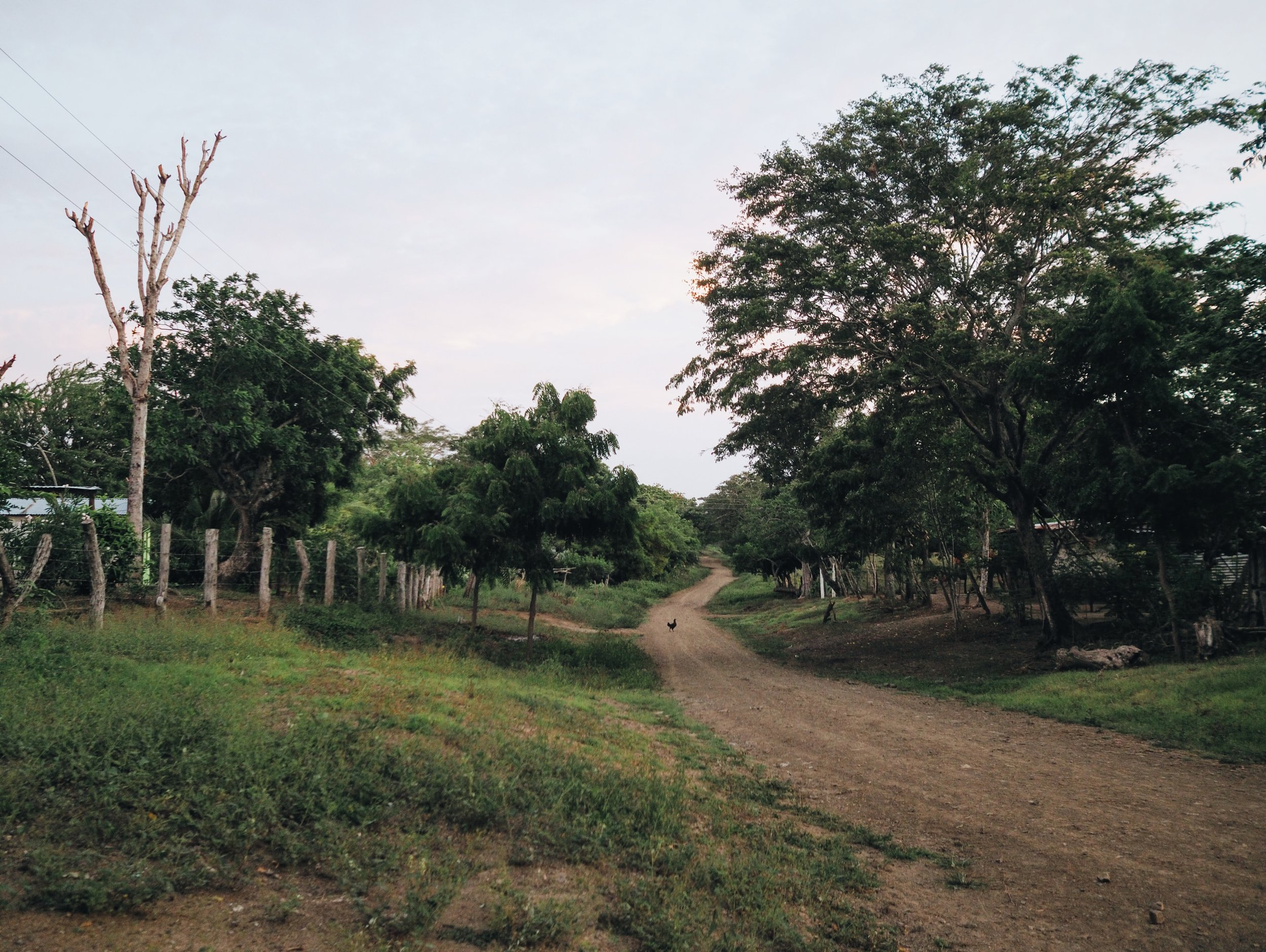 Cycling up the dirt road in Belen, looking for a lady named Diana