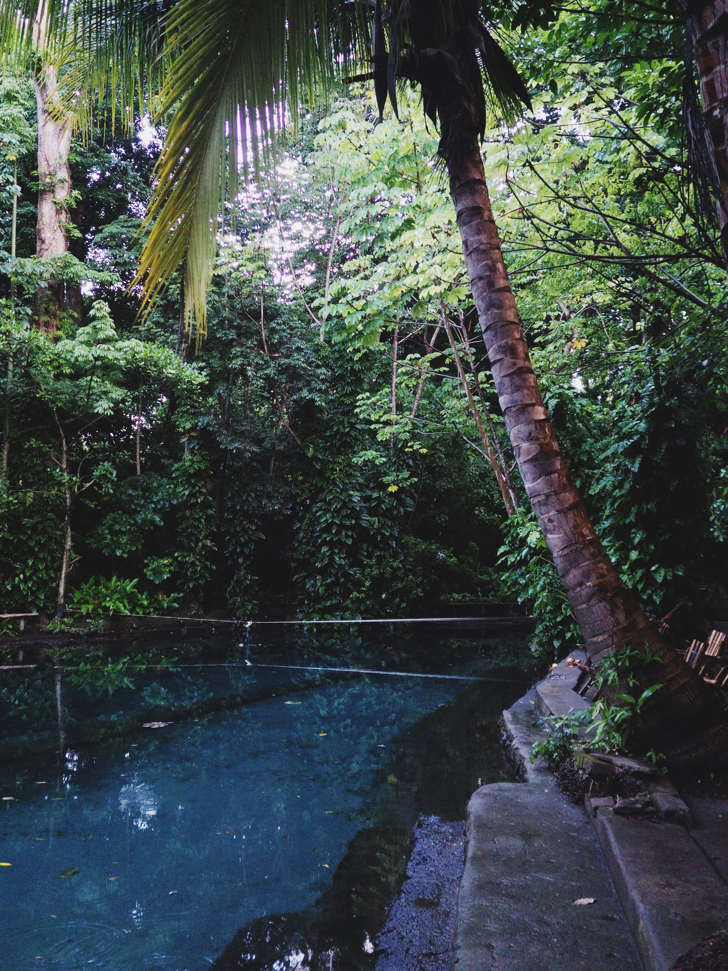 We finally reached Ojo de Agua after a solid dirt road stretch from the ferry. Ojo de Agua is a beautiful natural swimming hole beneath a green canopy of vegetation with cool, refreshing waters.
