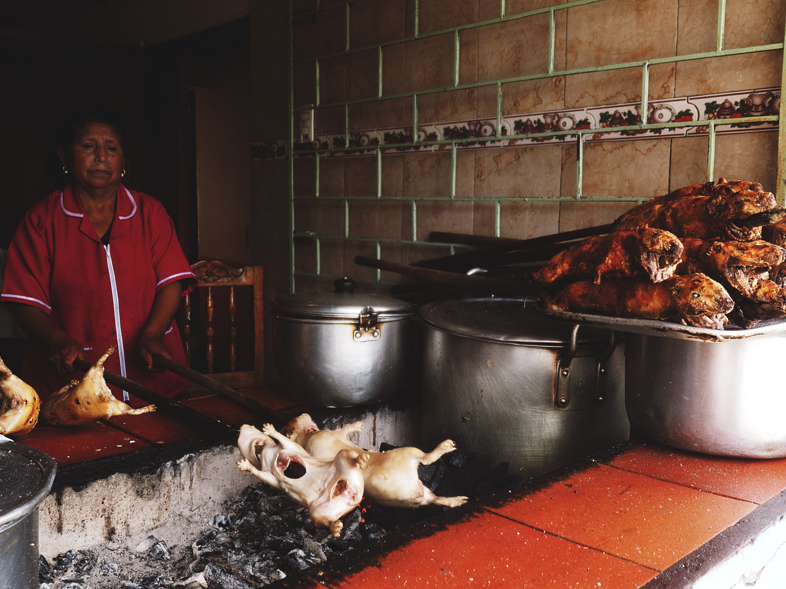 BARBEQUED OR GRILLED CUY (GUINEA PIG) IS A POPULAR DISH AROUND HERE. AS VEGETARIANS, WE ARE UNAPPEALED.