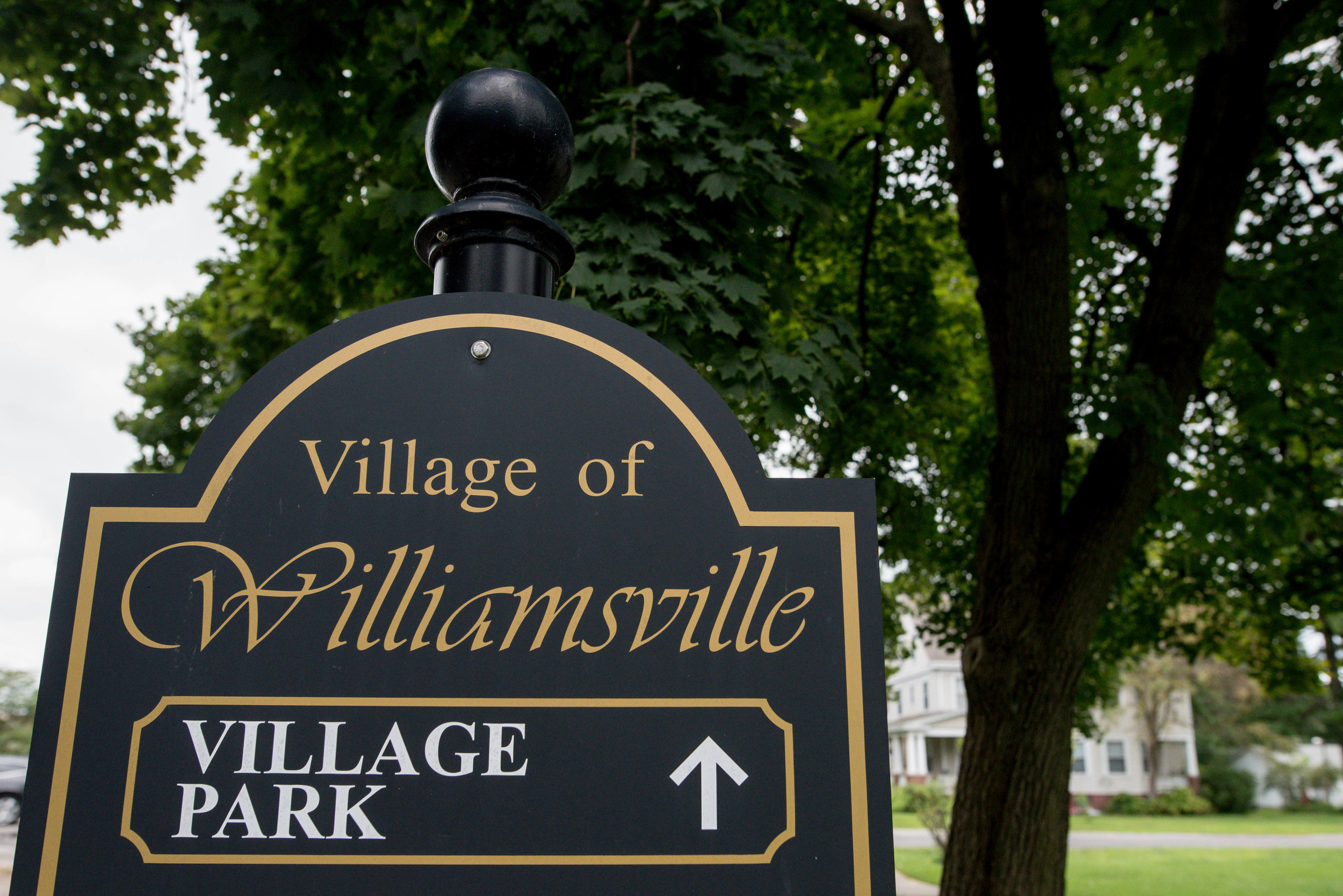 Williamsville Park Sign