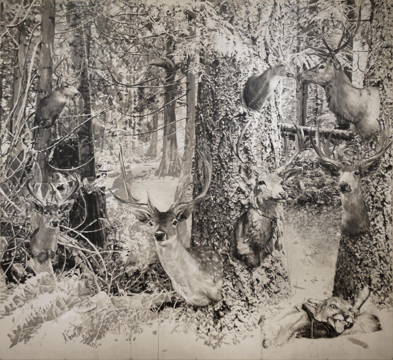 Animal/Nature