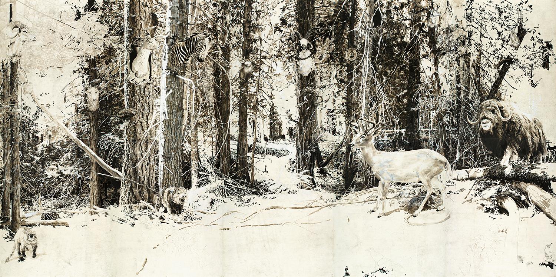 8-preservation-woods.jpg