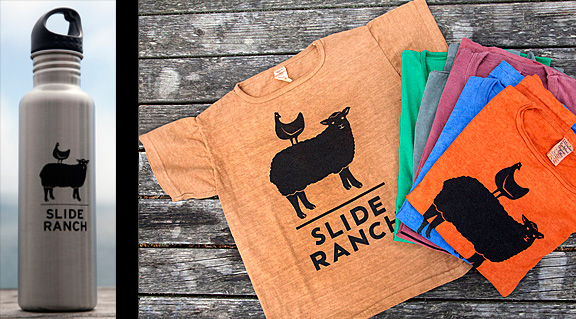 Slide_t-shirt_bottle.jpg