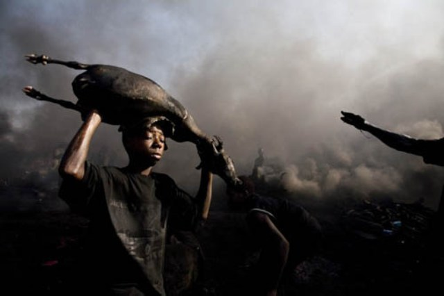nigerian-oil-spill-boy-with-dead-carcass1.jpg