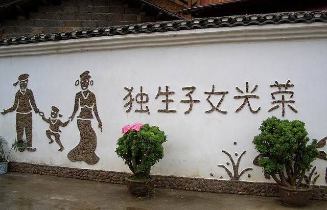 china-one-child-policy-translatation-single-child-brings-glory-photo-by-alaskie.jpg