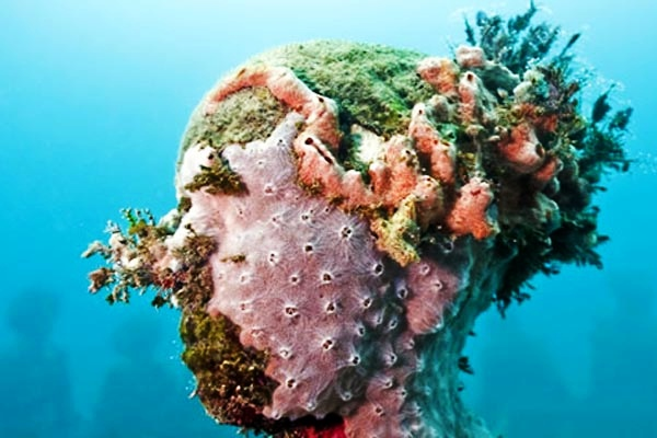 jason-decaires-taylor-installation-photo-by-eco-desen-volvimento.jpg