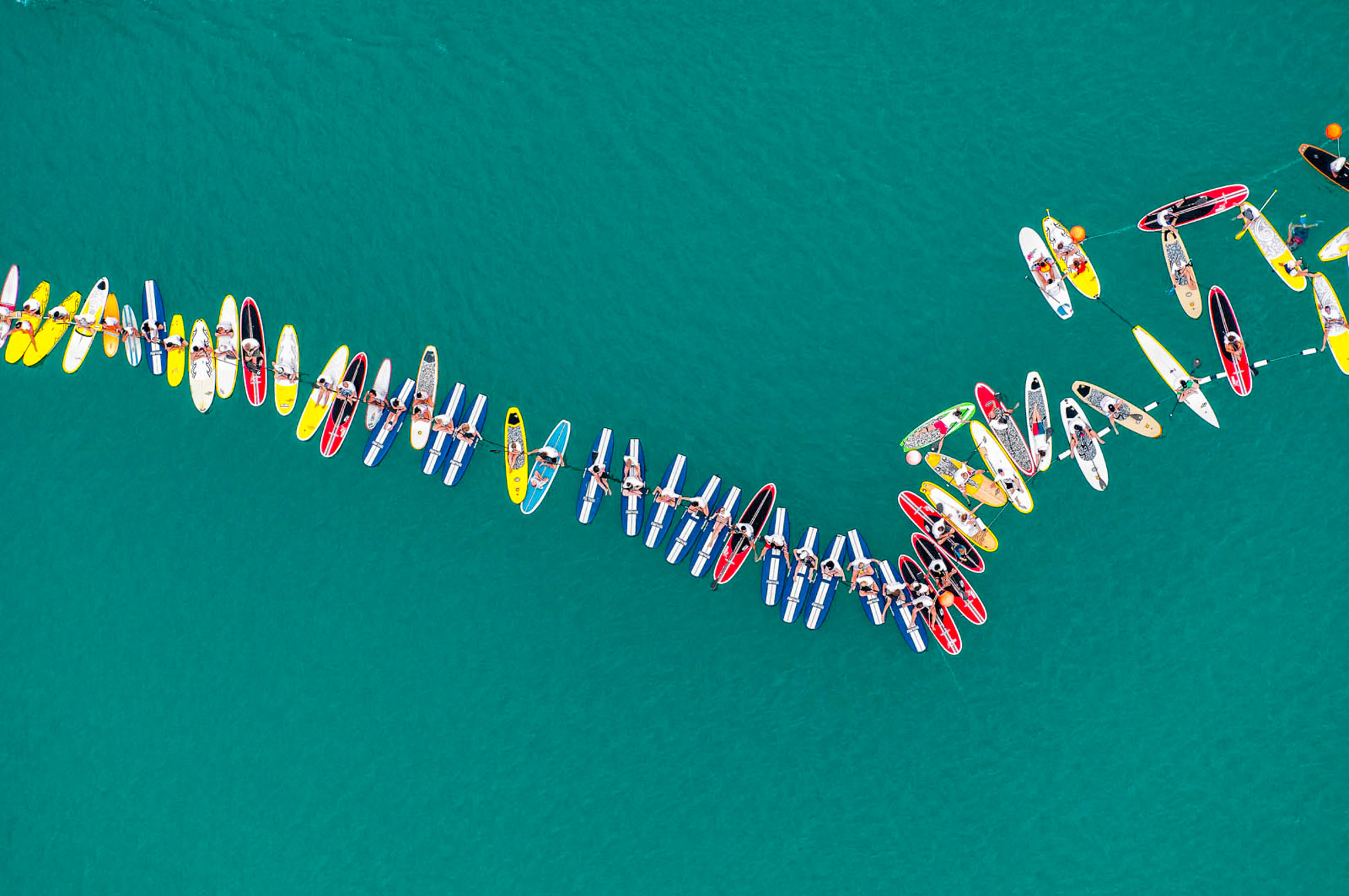 Paddle Board Line Up