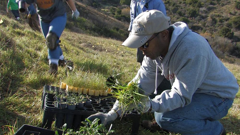 San Bruno Mountain Watch volunteer