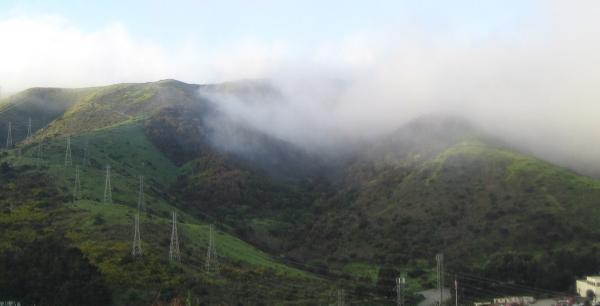 Fog.alane.jpg
