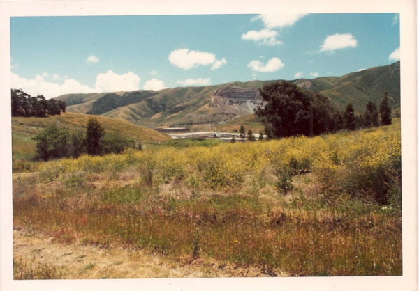 San Bruno Mountain's northeast ridge before development