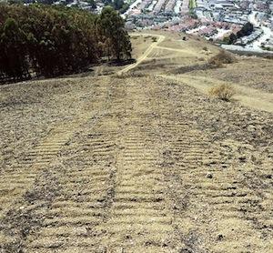 bulldozer tracks in 2013