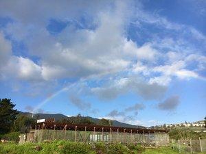 RainbowoverMBN.jpg