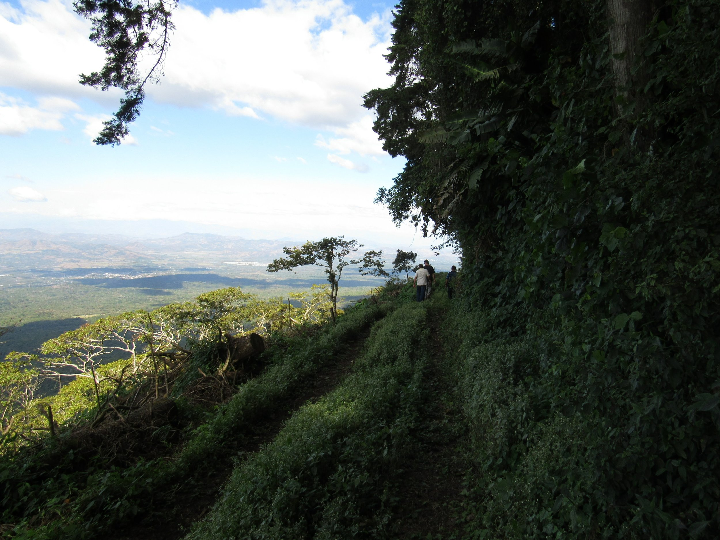 The road up to Finca Las Delicias hugs the side of the mountain and goes down at a pretty steep angle.