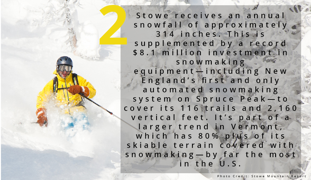 Facts.Snowtotal.jpg