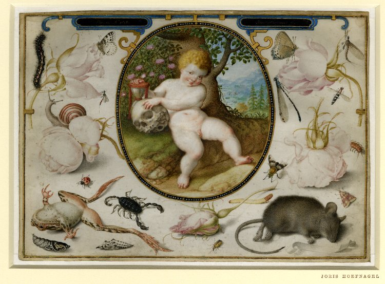 Allegory on Life and Death, attributed to  Jacob Hoefnagel . 1598. Image via  Wikimedia Commons.