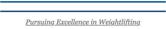 pursuing excellence.png
