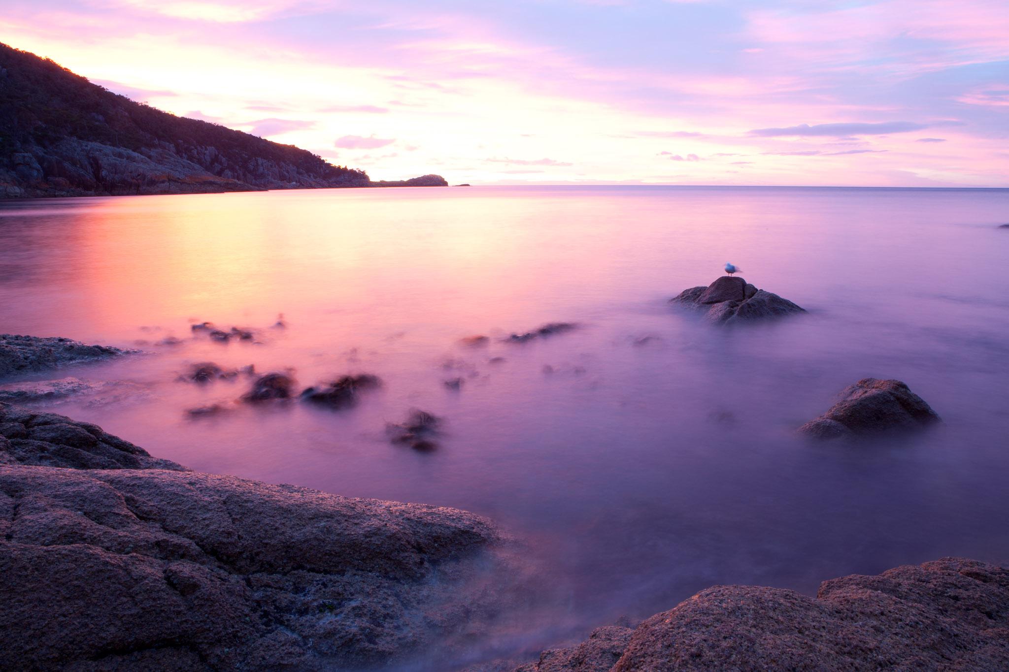 Tasmania (9 of 91).jpg