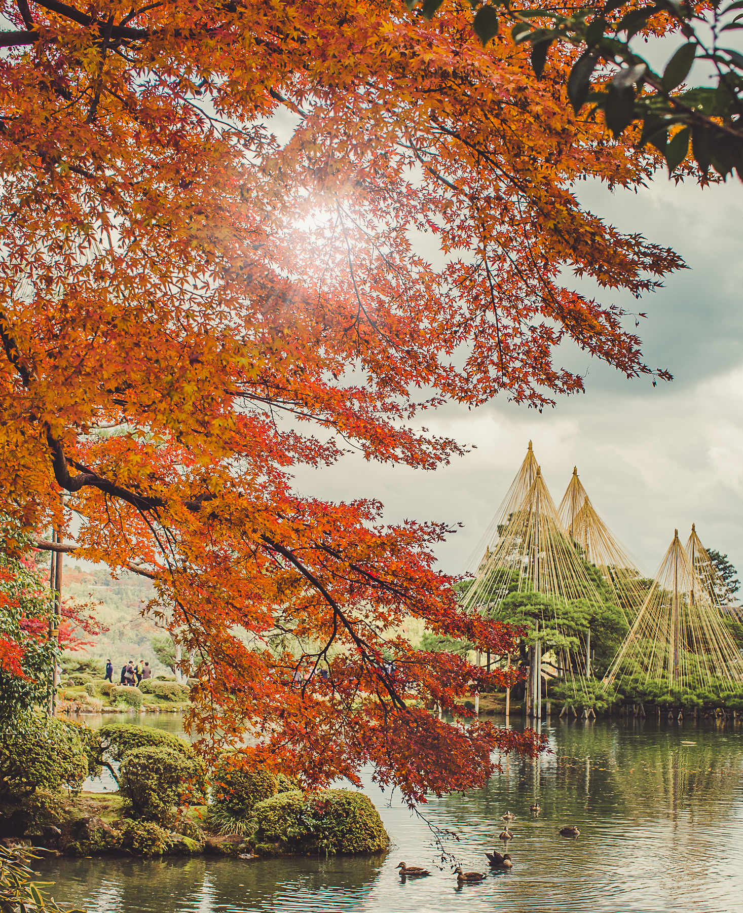 Japan Autumn Tour OCTober - Come experience Japan in the Autumn! Dates: Oct 27th - Nov 4th (10 days) Mix of Mountain and Seascape Photography.USD $3999 (twin share)