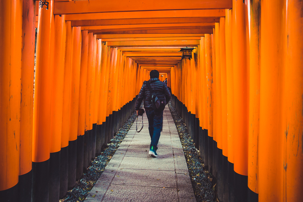 Japan Spring Tour - Come experience Japan in the spring! Dates: April 5th - 14th (10 days) Includes Tokyo At Night Exploration.USD $3999 (twin share)