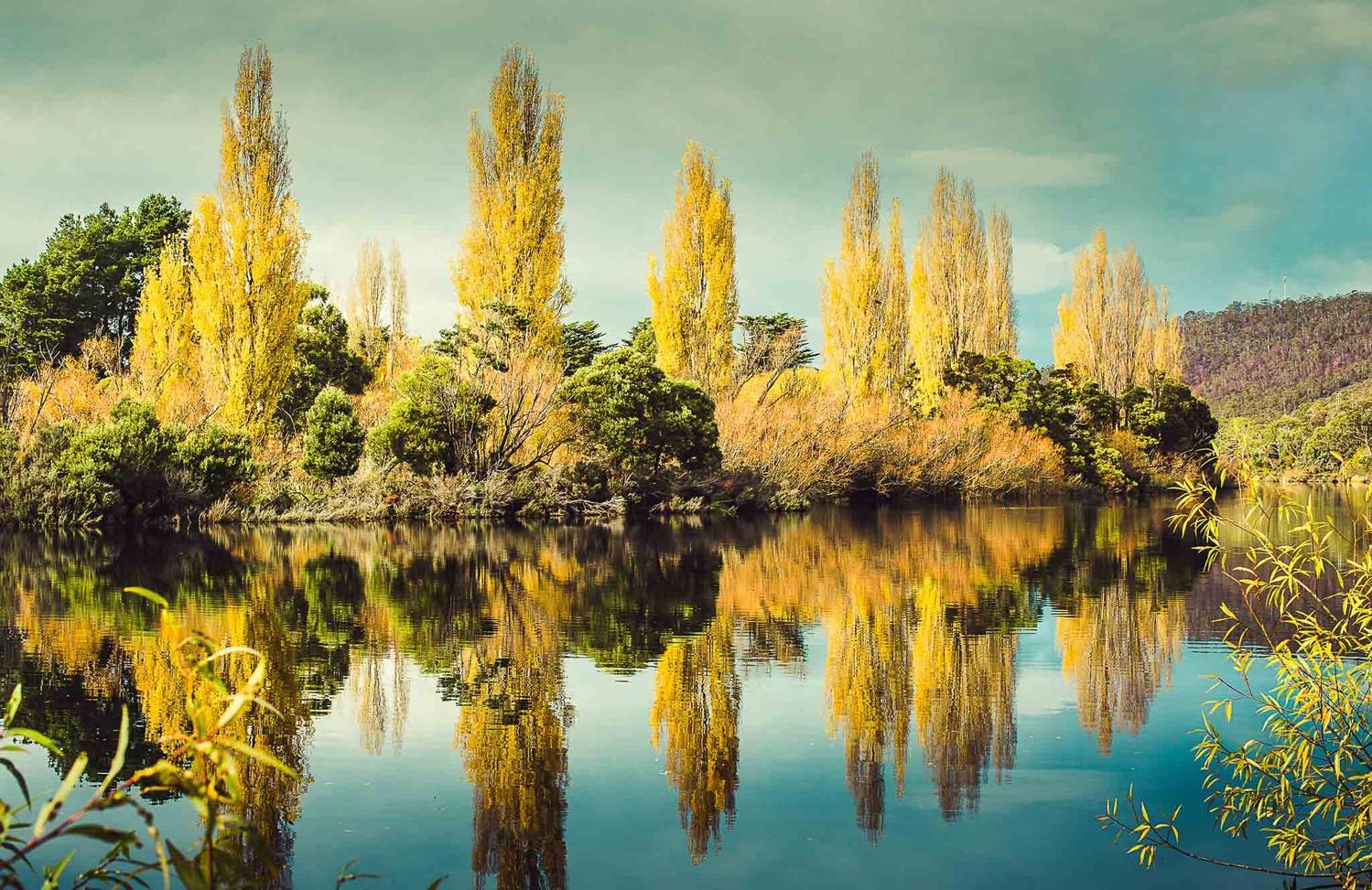 New Norfolk - Derwent River