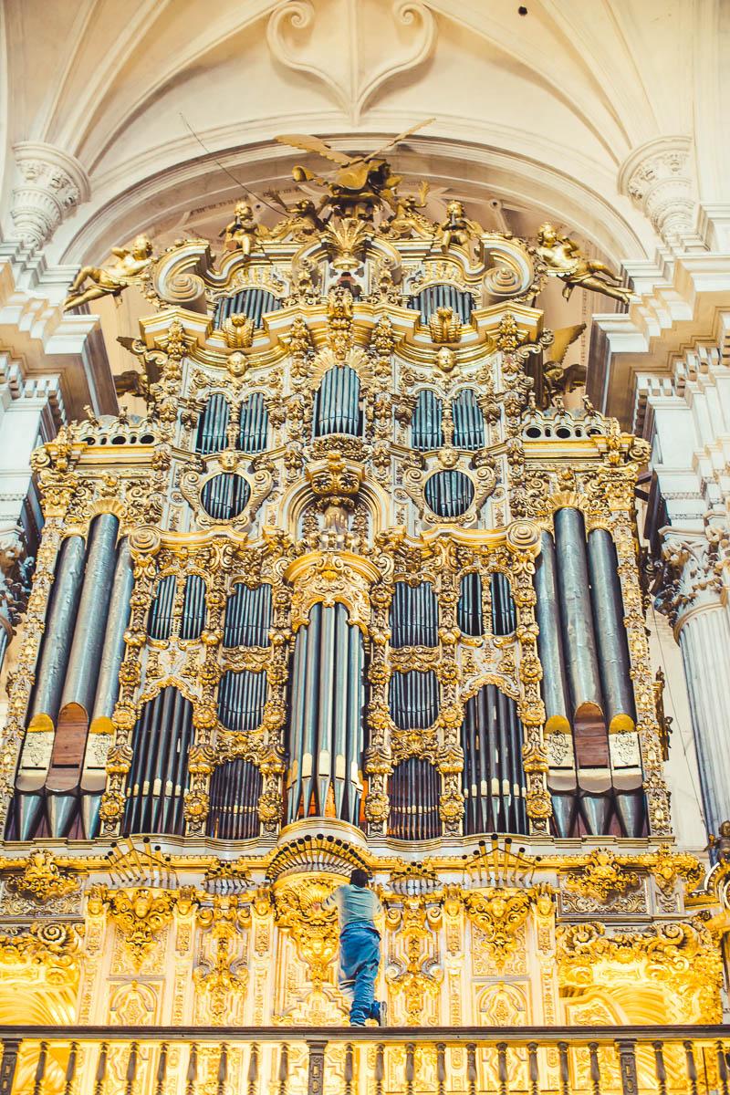 Organ Tuner in Granada Cathedral