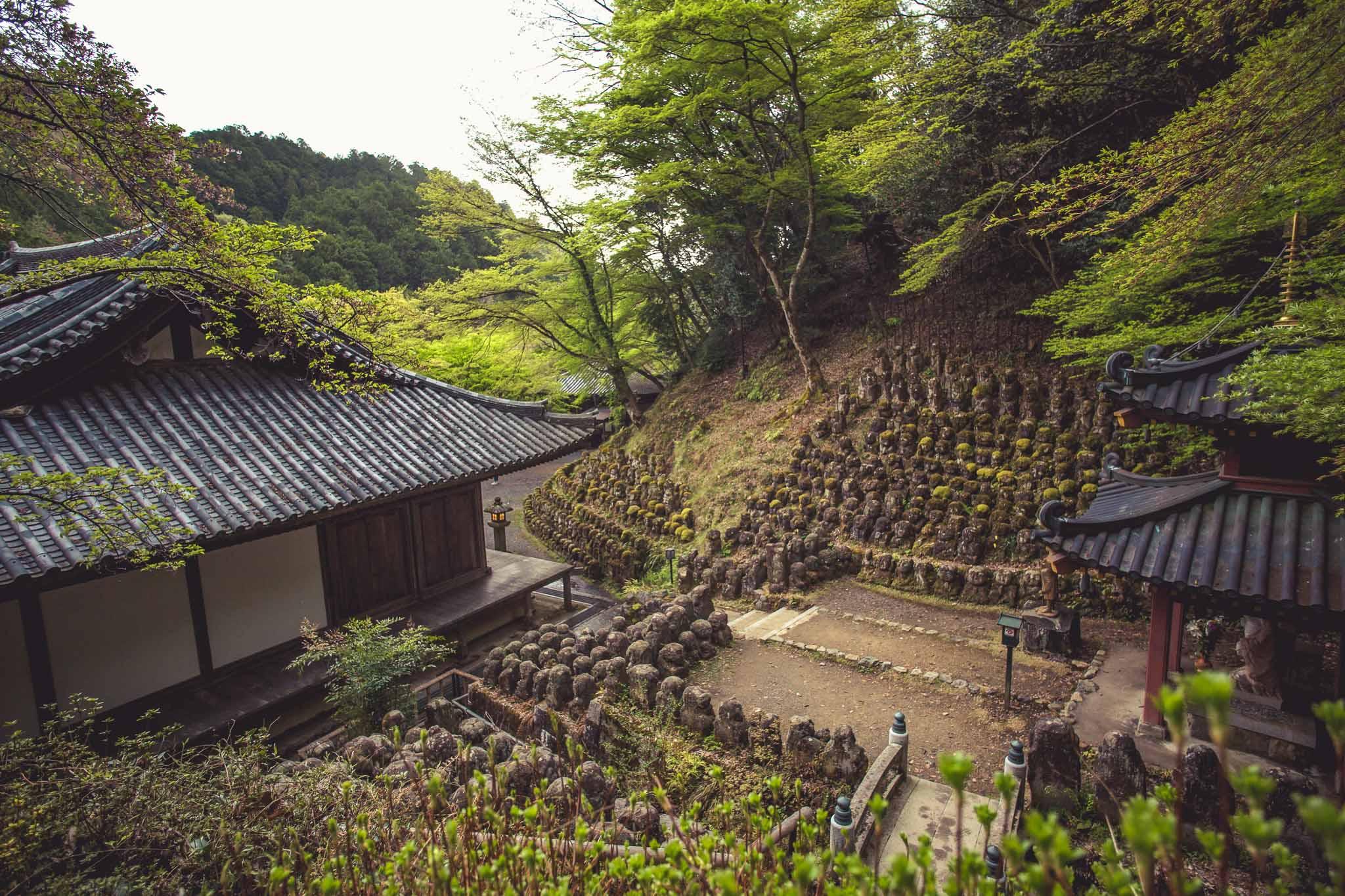Kyoto Spring Day 2 (64 of 125).jpg